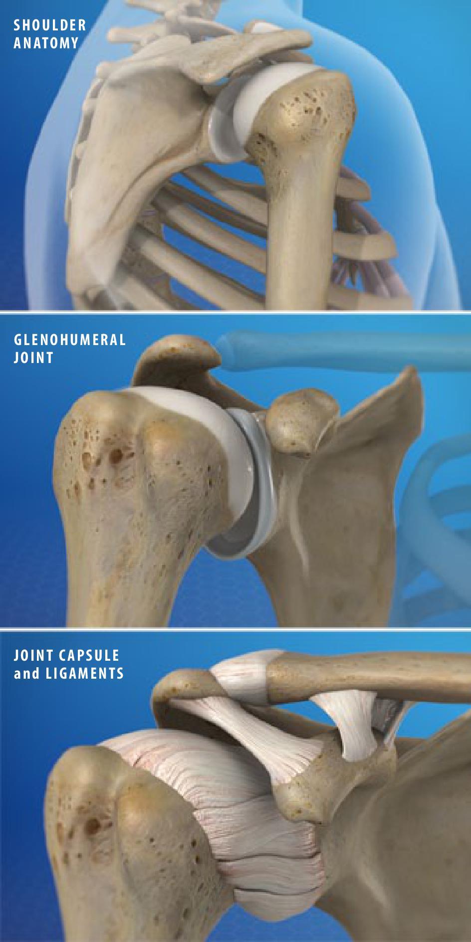 Cheyenne Orthopaedics, PC